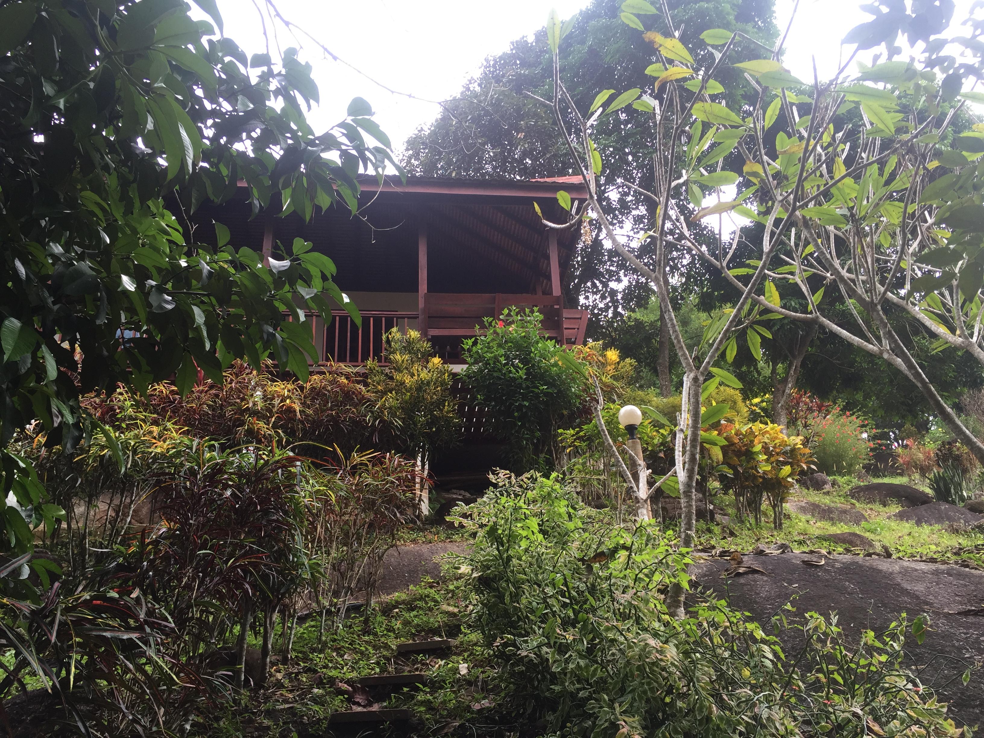 16 januar fra khaok lak til krabi christian jannes weblog - Bos lak ...